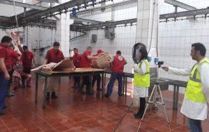 Biga Belediyesi Mezbaha Çalışanları Belgelerine Kavuşuyor