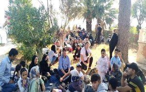 Çanakkale ve Biga'da 180 kaçak göçmen yakalandı