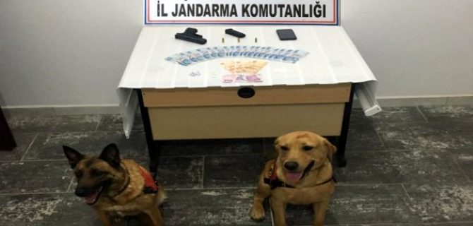 Biga'da uyuşturucu operasyonu: 1 tutuklama