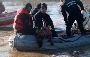 baraj suyunda kaybolan kişiyi 'kadavra köpekleri' arıyor